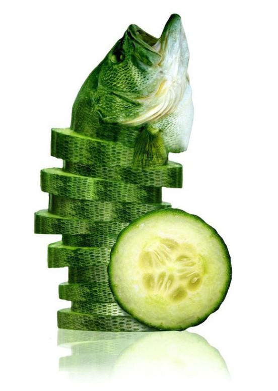 08-sea-cucumber3
