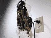 How To Fix A Broken Wall