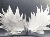 Premonition Crane