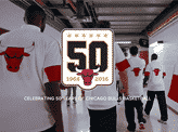 Chicago Bulls History