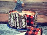 A Lumberjack Cake