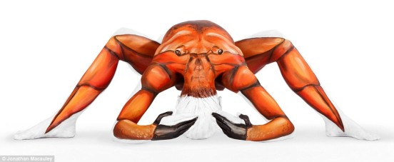 Here's looking at you! The eyes on this crab are shining out of the shoulder blades of Miss Fay's model.