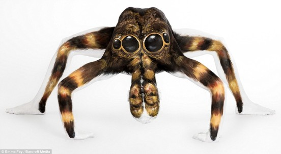 The stuff of nightmares! You wouldn't want this giant tarantula under your bed - no matter how elegantly it was painted