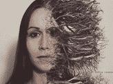 Dead Branches