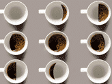 Coffee Phases