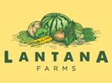 Lantana Farms