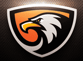 Sortie Gaming Eagle Sports