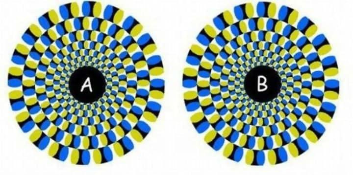 Macintosh HD:Users:brittanyloeffler:Downloads:Upwork:Optical Illusions 2:Mind-Blowing-Illusions-2.jpg