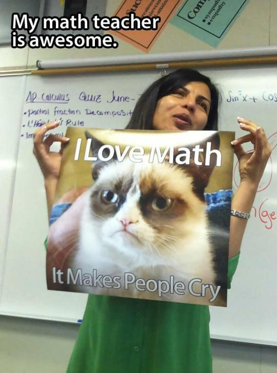 Macintosh HD:Users:brittanyloeffler:Downloads:Upwork:Teachers:funny-math-teacher-Grumpy-Cat-1.jpg