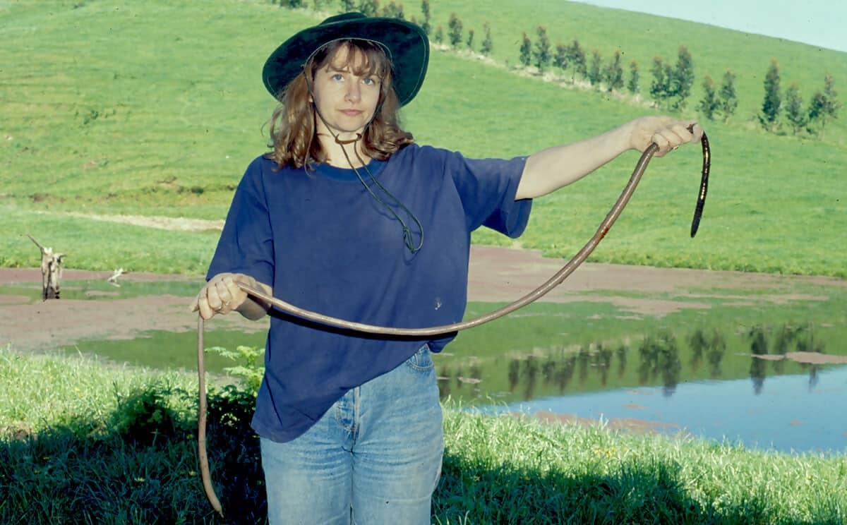 oman holding a Giant Gippsland Earthworm