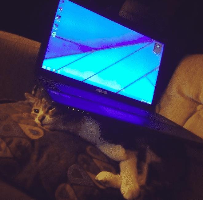 Macintosh HD:private:var:folders:sf:nnzf6d593v91pnjdzr14dp380000gn:T:TemporaryItems:Screen Shot 2019-10-30 at 1.58.34 PM.png